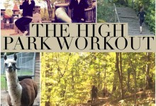 The High Park Workout
